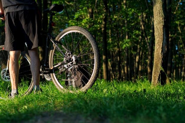 Ciclista na floresta ao pôr do sol