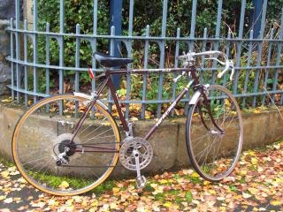 Ciclo de cura marrom