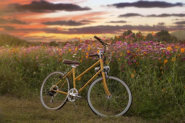Ciclo vintage com jardim de flores