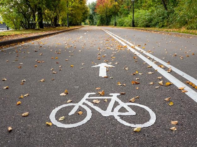 Ciclovia no outono