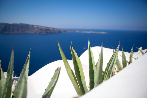 Cidade de oia na ilha de santorini, grécia.