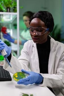 Cientista biólogo afro-americano jogando líquido usando micropipeta em uma placa de petri