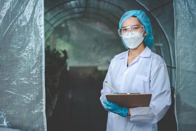 Cientista de biologia trabalhando para pesquisar uma planta de crescimento em estufa de agricultura, tecnologia de ciência orgânica da natureza ou biotecnologia em laboratório de botânica, pessoas examinando vegetais para a indústria de alimentos