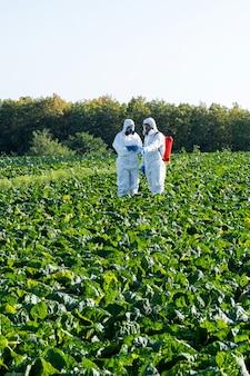 Cientista e agrônomo máscara química e óculos em campo agrícola