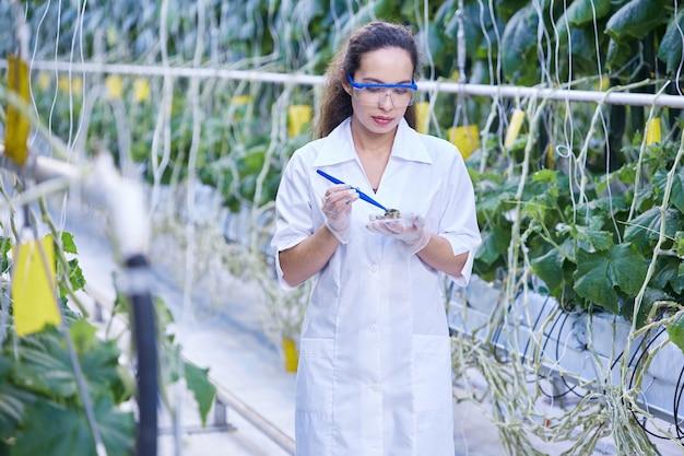 Cientista fêmea tomando sondas na plantação