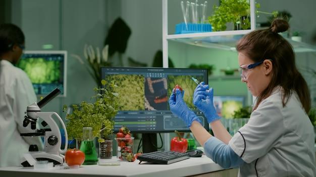 Cientista injetando morango com pesticidas descoberta mutação genética