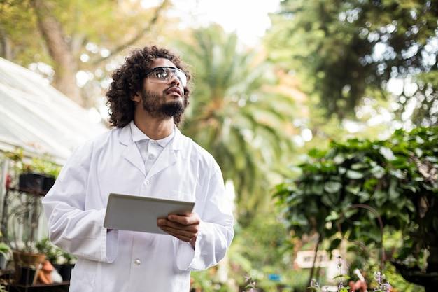 Cientista masculina que inspeciona plantas na estufa