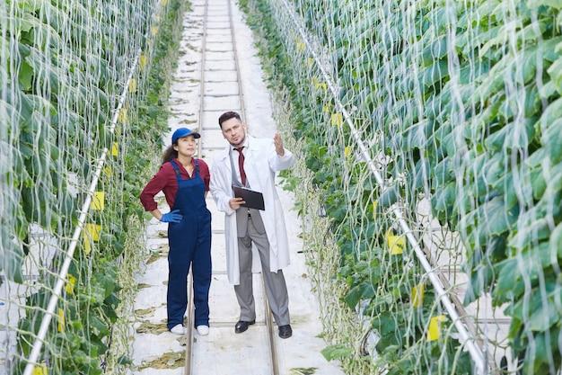 Cientista que trabalha na plantação industrial