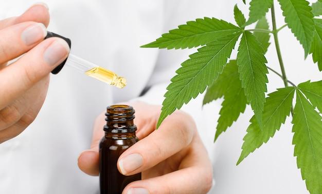 Cientista segurando uma garrafa de óleo de cânhamo nas mãos