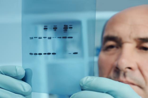 Cientista sênior verifica resultados de experimentos com proteínas