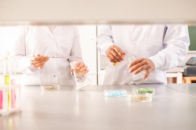 Cientistas agrícolas fazendo experimentos com plantas
