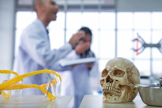 Cientistas médicos estão pesquisando o crânio na sala de pesquisa.