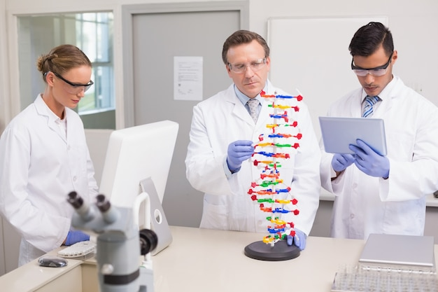 Cientistas que trabalham juntos