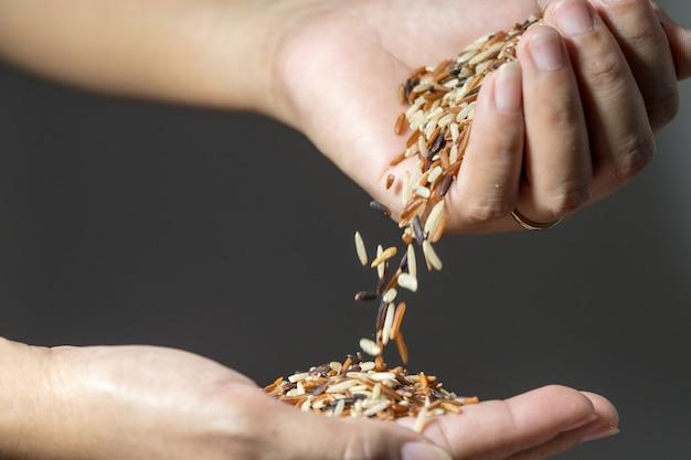 Cima, cereal, arroz, grãos, queda, de, woman's, mão