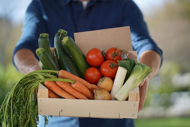 Cima, de, local, agricultor, segurando, crate, de, orgânica, sazonal, legumes, com, sinal