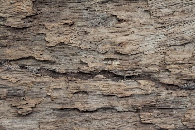 Cima, de, madeira, textura
