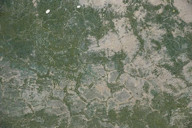 Cimento de cor verde na textura e fundo