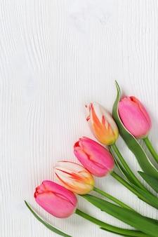 Cinco tulipas frescas. tulipas brilhantes lindas flores multicoloridas em fundo branco de madeira. vista do topo. formato vertical.