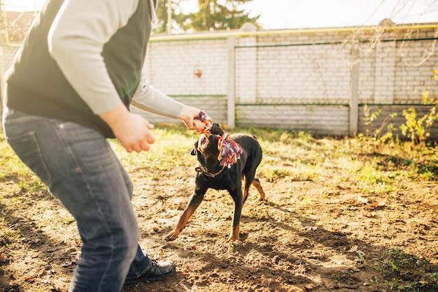 Cinologista trabalha com cão-guia do lado de fora