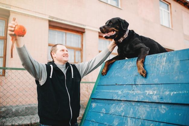 Cinologista treinando cão trabalhador no playground