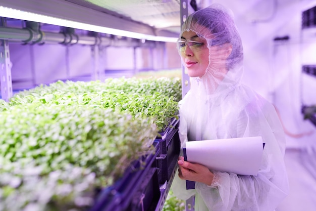 Cintura para cima, retrato de uma engenheira agrícola examinando plantas em uma estufa iluminada por luz azul, copie o espaço