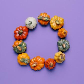 Círculo de abóboras para composição de outono