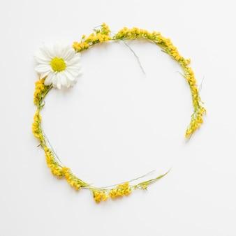 Círculo de flores amarelas e camomila