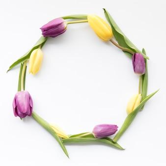 Círculo de lindas tulipas