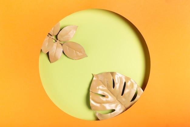 Círculo de papel com folhas dentro do círculo