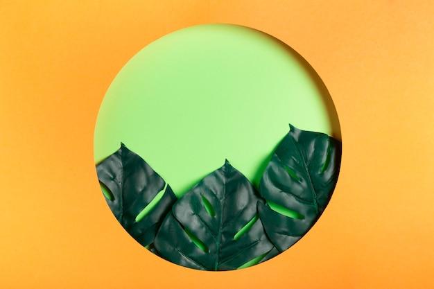 Círculo de papel com folhas dentro
