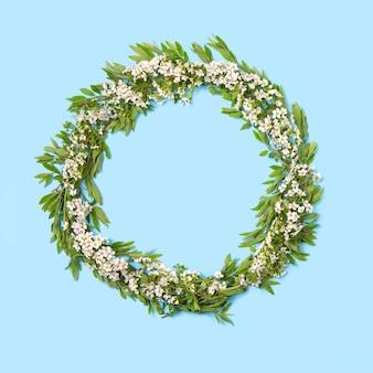 Círculo de ramos de floração pináculo em uma parede azul. flores pequenas brancas. carta