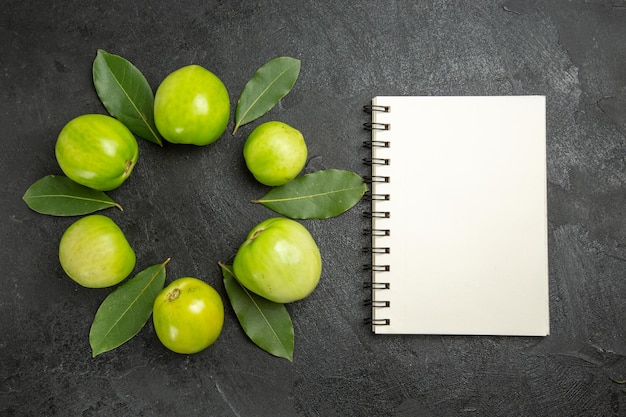 Círculo de vista superior de tomates verdes e folhas de louro um caderno na superfície escura