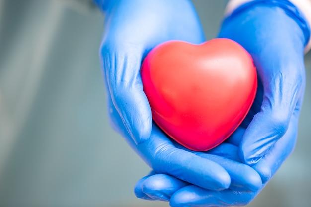 Cirurgião segurando um modelo de coração humano heart.anatomy.