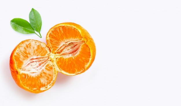 Citrinos alaranjados frescos isolados no fundo branco. suculento, doce e com alta vitamina c.