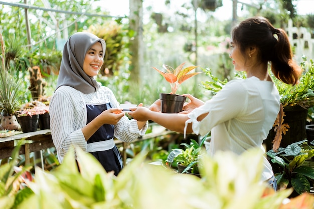 Cliente que compra algumas plantas