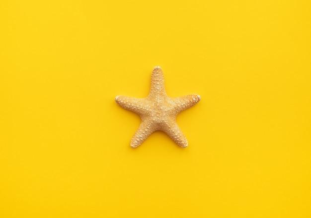 Clima de verão papel de parede fundo viagem estrela do mar