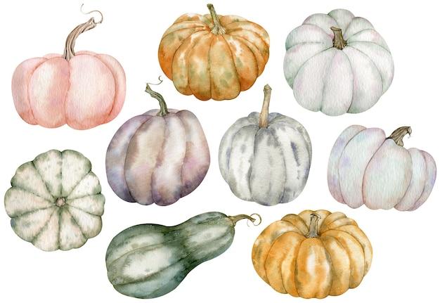 Clipart de abóbora em aquarela de ação de graças. abóboras coloridas desenhadas à mão - rosa, cinza, laranja, verde. conjunto de colheita de vegetais isolado no fundo branco.