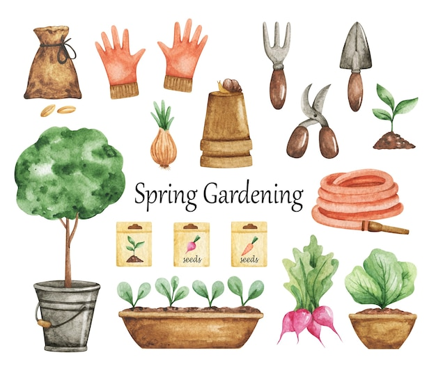 Clipart de jardinagem em aquarela, ferramentas de jardim isoladas, tempo de primavera, trabalho de jardim, mudas, vasos, mangueira