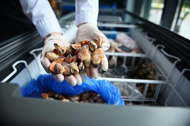 Close da mão de um peixeiro em uma peixaria segurando mexilhões retirados de uma geladeira cheia de frutos do mar congelados.