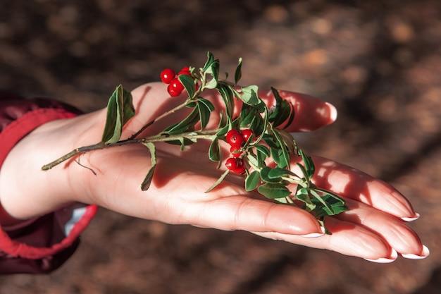Close da mão de uma mulher com vários mirtilos