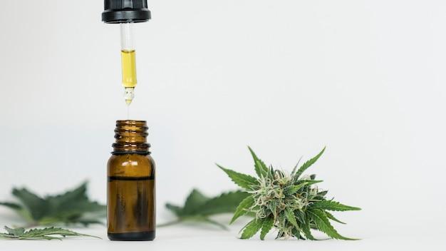 Close da mão segurando uma pipeta com óleo de cânhamo e botões de maconha óleo de extrato medicinal em uma garrafa