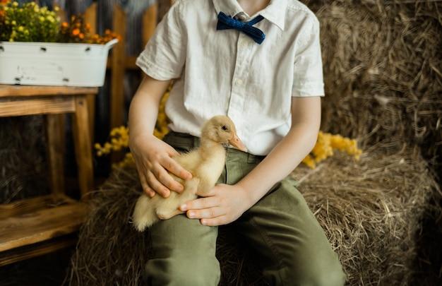 Close das mãos de uma criança caucasiana segurando um patinho amarelo em uma superfície rústica