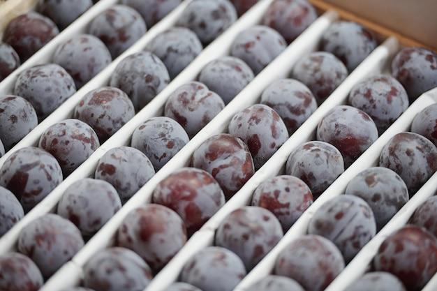 Close de ameixas frescas em fileiras colocadas em uma caixa no balcão de alimentos no mercado de produtores