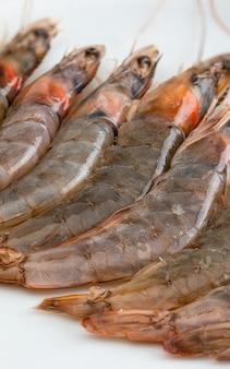 Close de camarões frescos, crus e inteiros