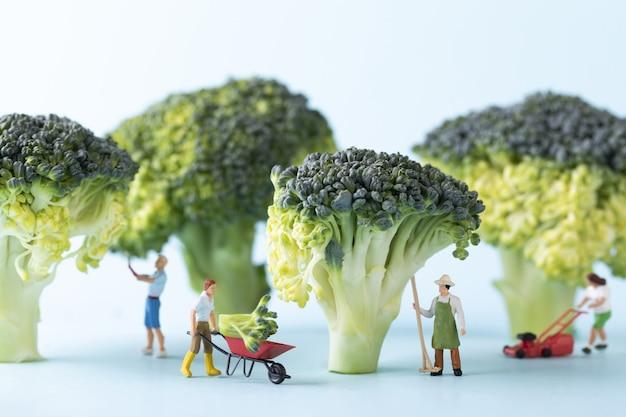 Close de foco seletivo de um povo de brinquedo e brócolis em fazendeiros de conceito de fundo azul trabalhando