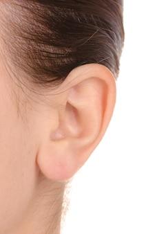 Close de orelha humana isolado no branco