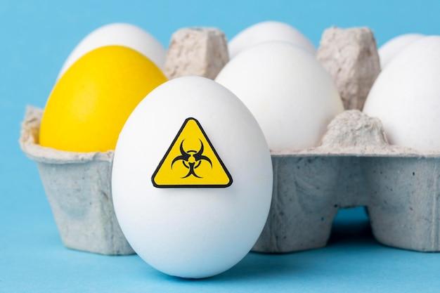 Close de ovos de alimentos modificados por ogm