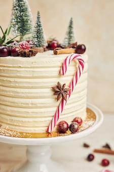 Close de um bolo de natal com anis e frutas vermelhas