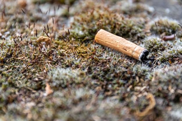 Close de um cigarro usado jogado no chão de grama
