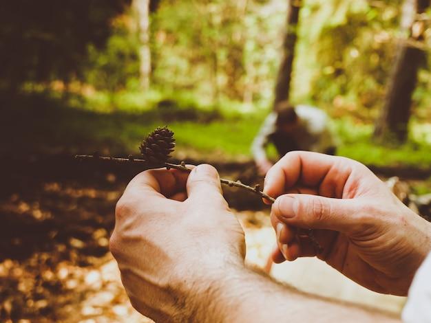 Close de um homem segurando um galho com pinheiros